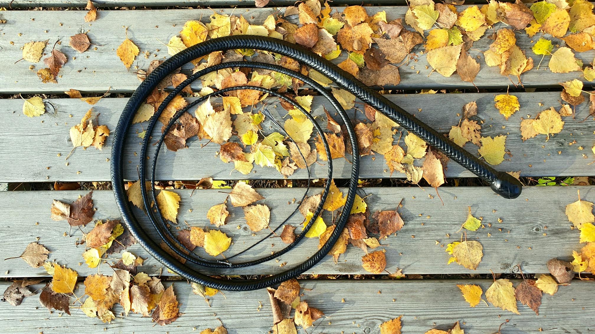 Black Bullwhip whip dyneema fall